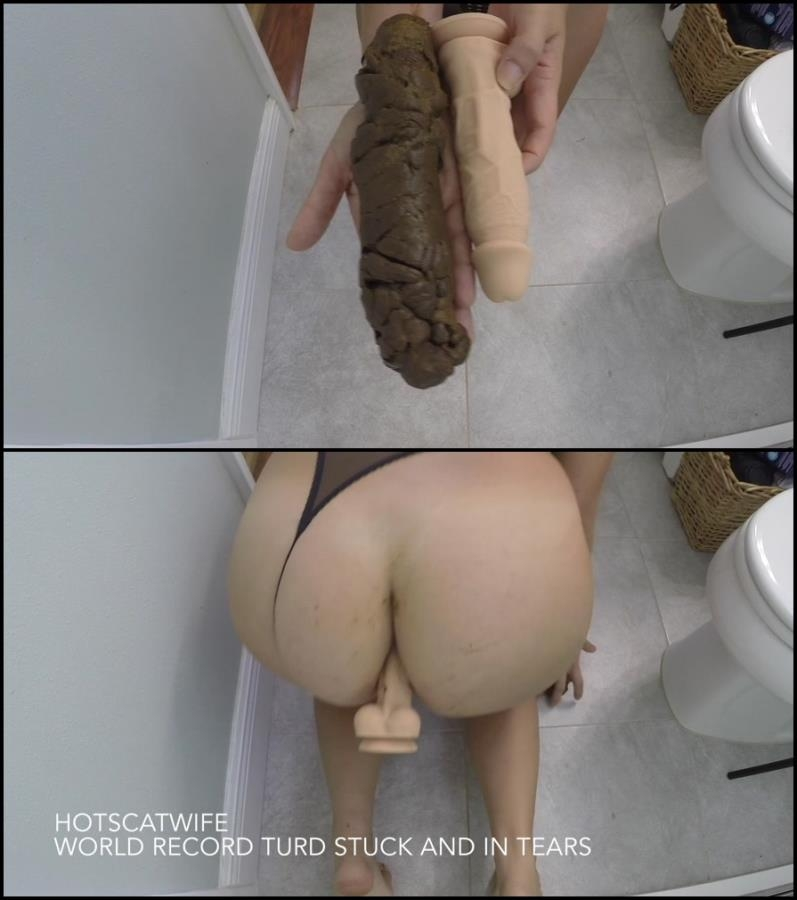 Woman defecates very large hard turd – this world record - Special #582 (FullHD 1920x1080)