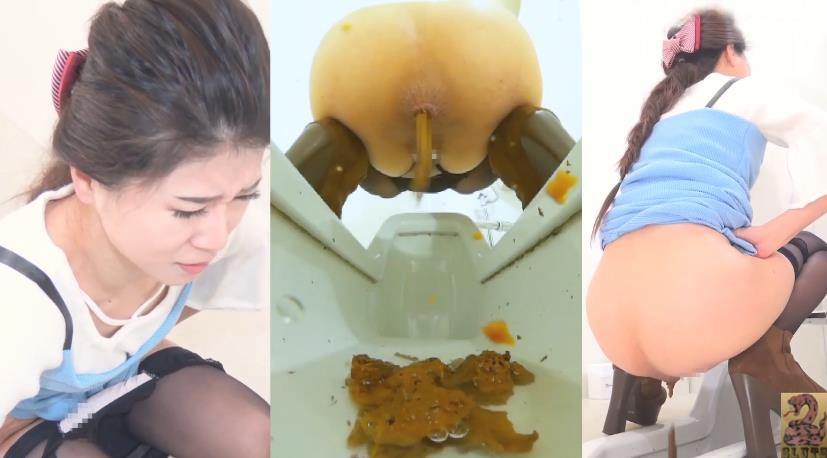 Pooping Woman in Public Toilet and Spy Camera トイレスパイカメラのうんち - BFSR-231 (FullHD 1920x1080)